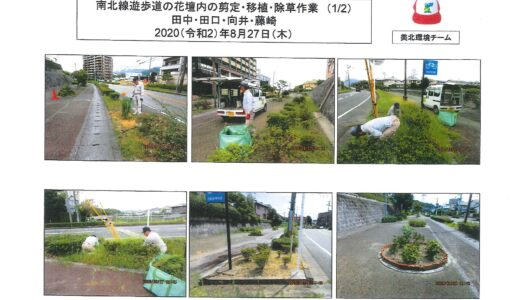 8月27日 美北環境チーム 南北遊歩道の花壇内の選定・移植・除草作業